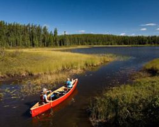 Murphys Point Provincial Park