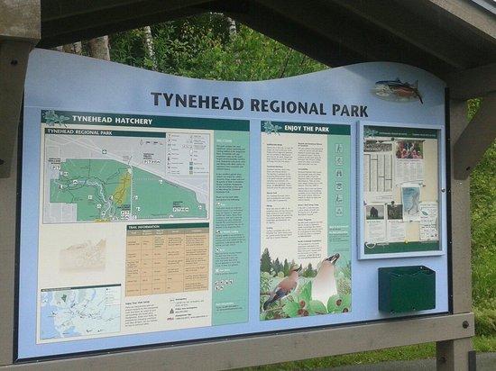 Tynehead Park