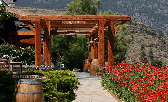 Kraze Legz Vineyard and Winery