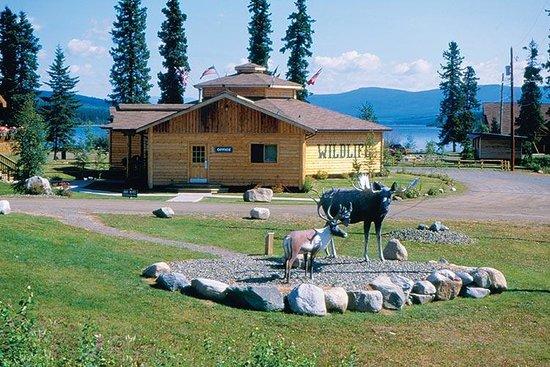 Northern Wildlife Museum