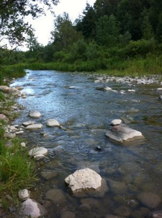 Rouge Park Conservation Area