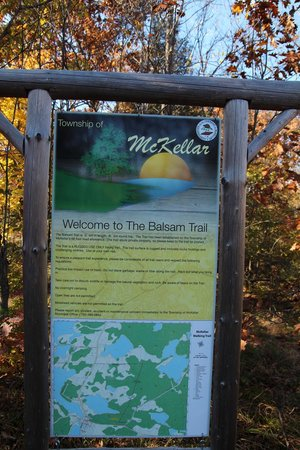 The Balsam Trail