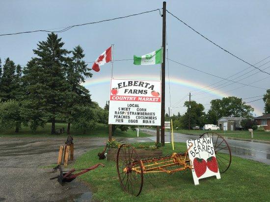Elberta Farms